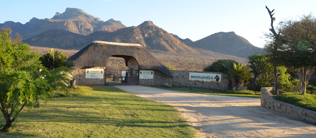 moholoholo mountain view, self catering, thatched cottages, bushveld, accommodation, bird watching, hoedspruit, kruger national park, lowveld acasia woodland