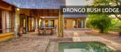 DRONGO BUSH LODGE