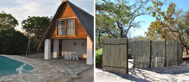 accommodation, maduma, boma, madumaboma, mpumalanga, limpopo, self catering, kruger national park, south africa, blyde, pass, river, game, wild animals, Cheetah