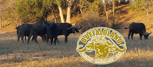 BUFFALOLAND SAFARIS