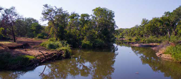 Rukiya Safari Camp, Wild Rivers Nature Reserve, Safari, Kruger, hoedspruit game lodge, safari lodge, accommodation, limpopo